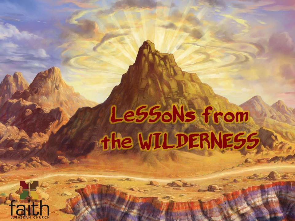 Lessons From the Wildnerness